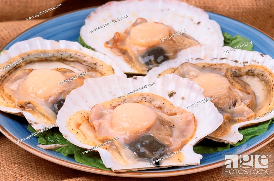 Stock Photo: Scallops With Shells.