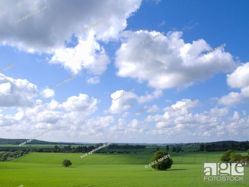 Stock Photo: Green fields and cloudy sky.