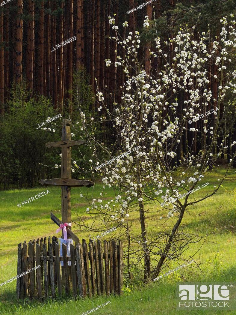 Photo de stock: Poland. Podlasie region. Spriong. Wooden orthodox cross.