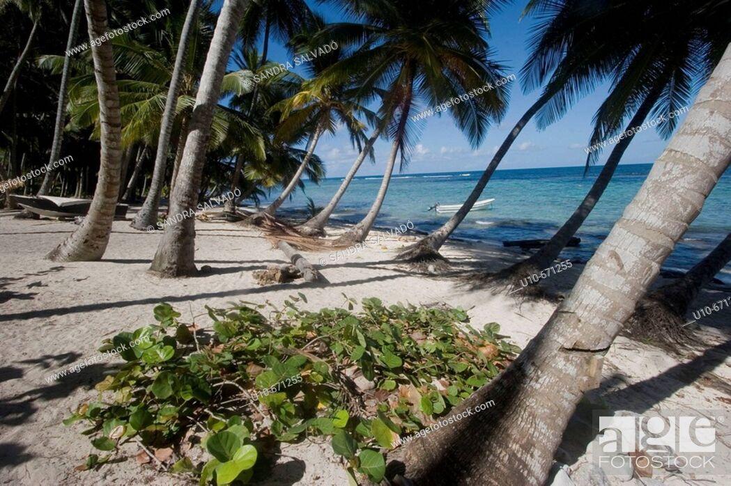 Stock Photo: Playa Frontón, Samaná Peninsula, Dominican Republic.