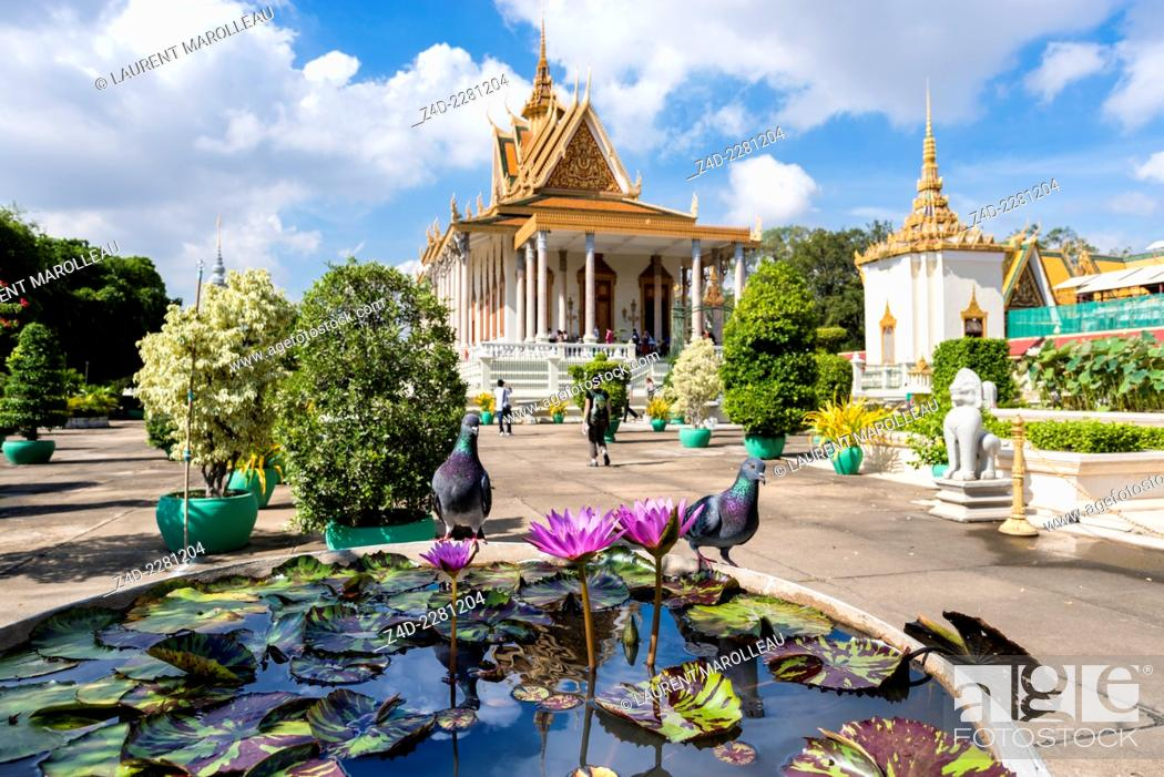 Imagen: Pink Water Lily and Silver Pagoda. The Silver Pagoda's proper name is Wat Preah Keo Morokat, which means 'The Temple of the Emerald Buddha'.