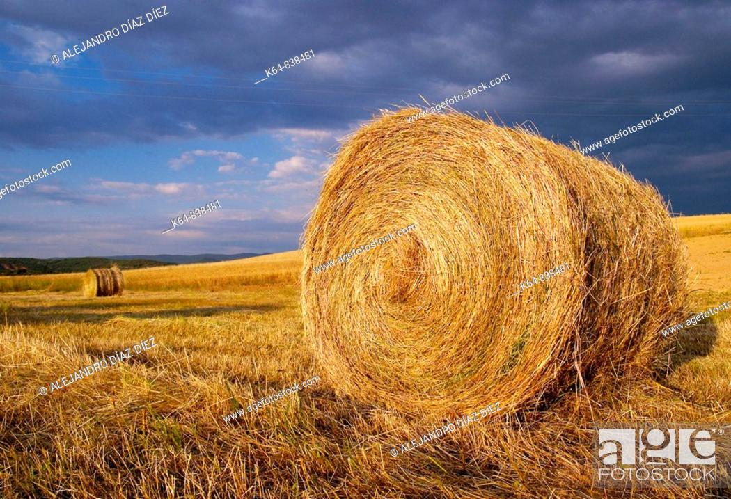 Stock Photo: Hay bales.