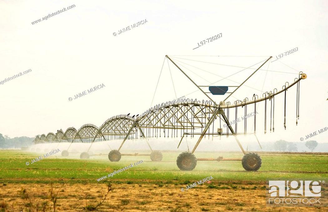 Stock Photo: Irrigation sprinklers.