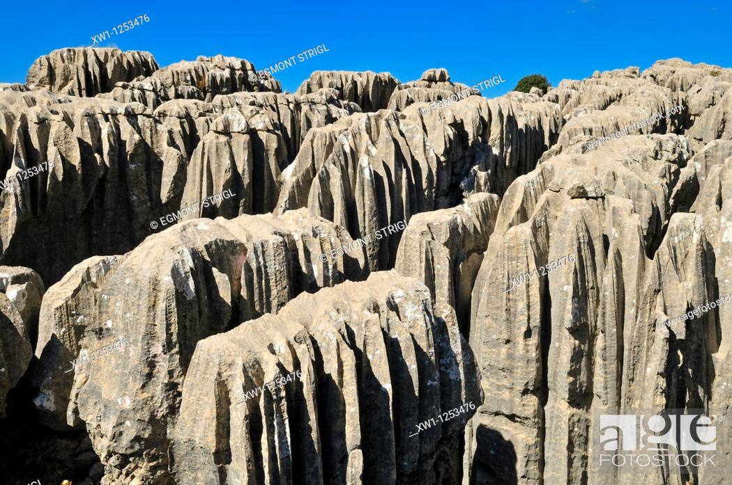 Stock Photo: geology, eroded limestone, karst formation at Qalaat Faqra, Lebanon, Middle East, West Asia.