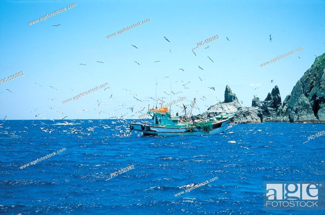 Stock Photo: Fishing Boat,Ulleungdo Island,Gyeongbuk,Korea.
