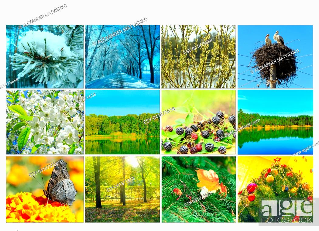 Stock Photo: Blank with different twelve colored images of nature for calendar. Ready photo for calendar. Pictures for yearly calendar. Placard for office.