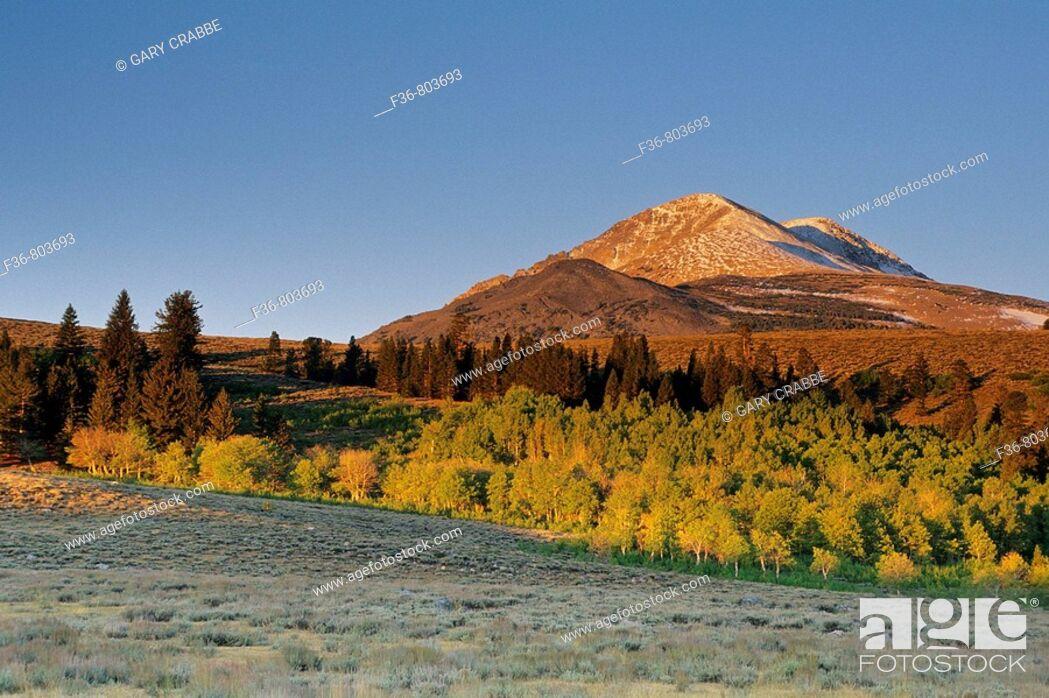 Stock Photo: First light on Dunderberg Peak in early fall, Virginia Lakes area, near Lee Vining, CALIFORNIA.