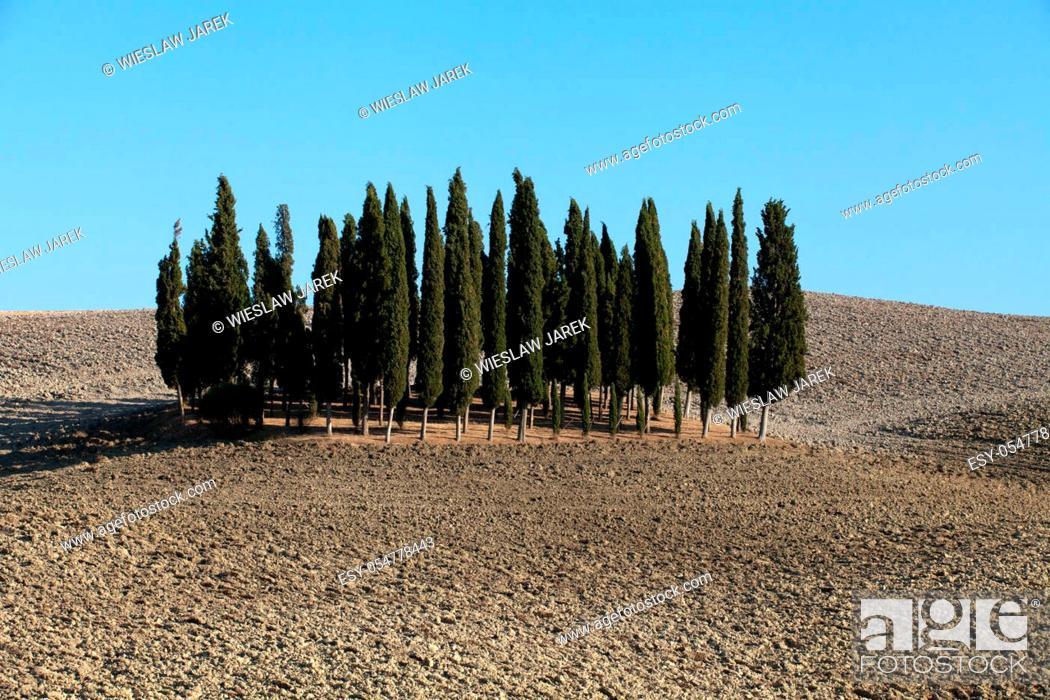 Stock Photo: The landscape of the Tuscany. Italy.
