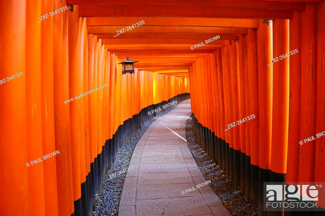 Stock Photo: Senbon Torii, tunnels of red torii gates, at Fushimi Inari Shinto shrine in Kyoto, Japan.