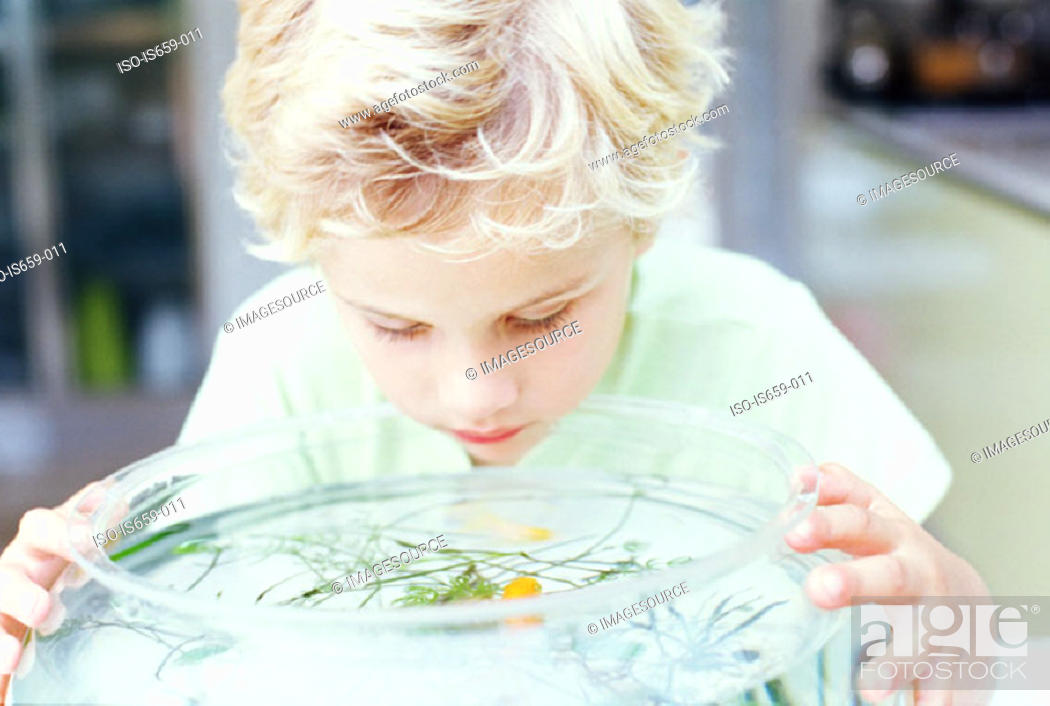 Stock Photo: Boy looking into fish bowl.