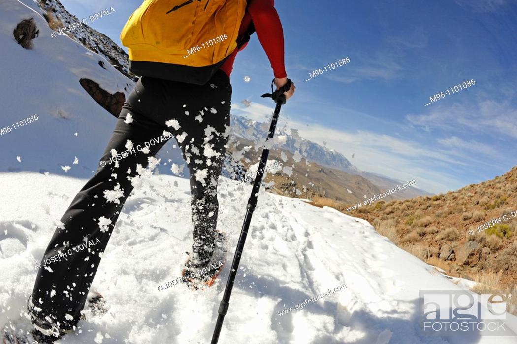 Stock Photo: Snow shoeing up close, Inyo National Forest, California, USA.