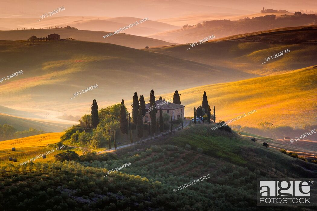 Stock Photo: Tuscany, Val d'Orcia, Italy. Sunrise over the green and golden hills, with lonely farmhouse and cypress trees.
