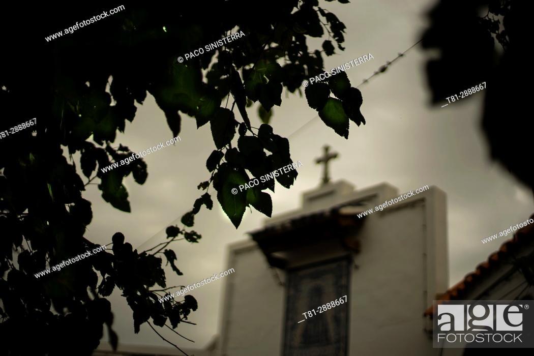 Imagen: Cemetery, Benimaclet, Spain.