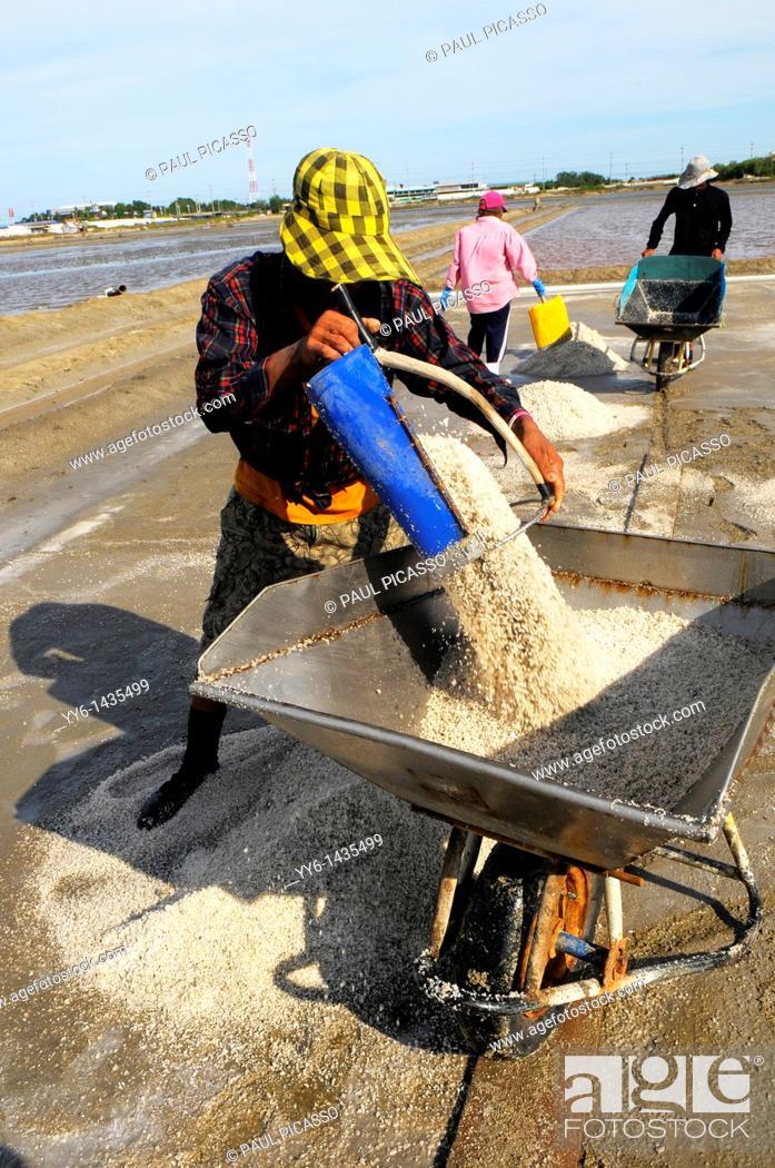 Stock Photo: Salt fields of samut sakhon, labourers harvesting salt, samut sakhon , Thailand.