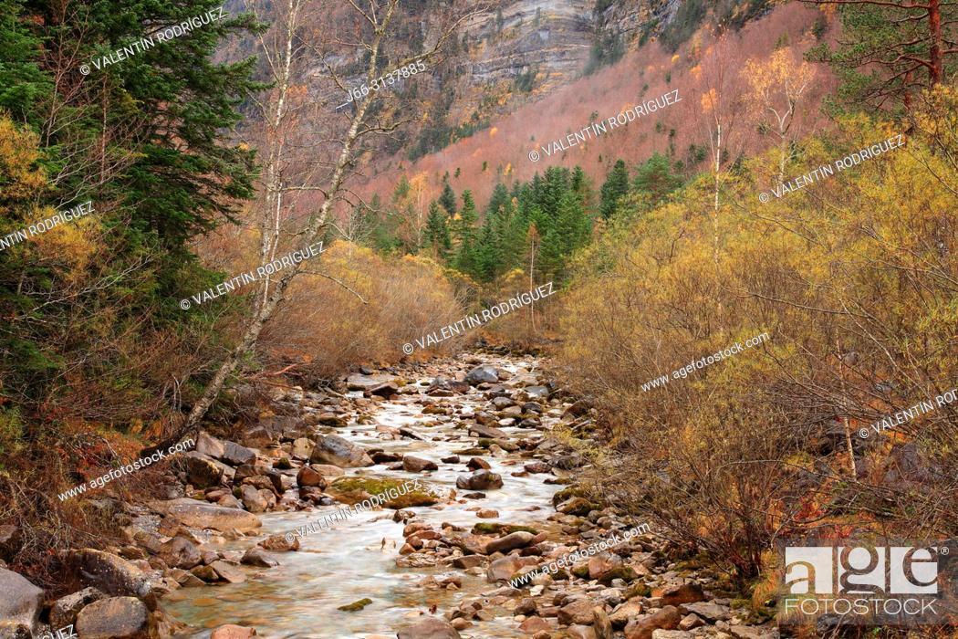 Stock Photo: Arazas river in the Ordesa valley from the Cazadores bridge. Ordesa y Monte Perdido national park. Huesca.
