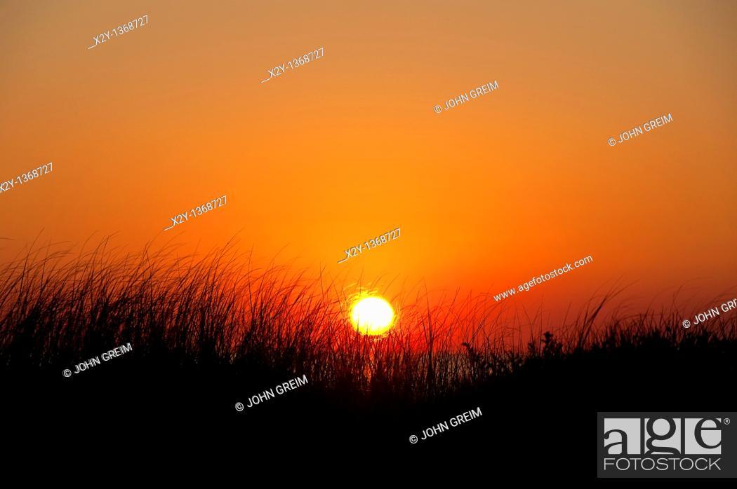 Stock Photo: Coastal sunrise, Cape Cod, MA, USA.