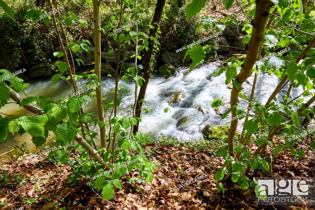 Stock Photo: Ibaider River, Nuarbe, Gipuzkoa, Basque Country, Spain.