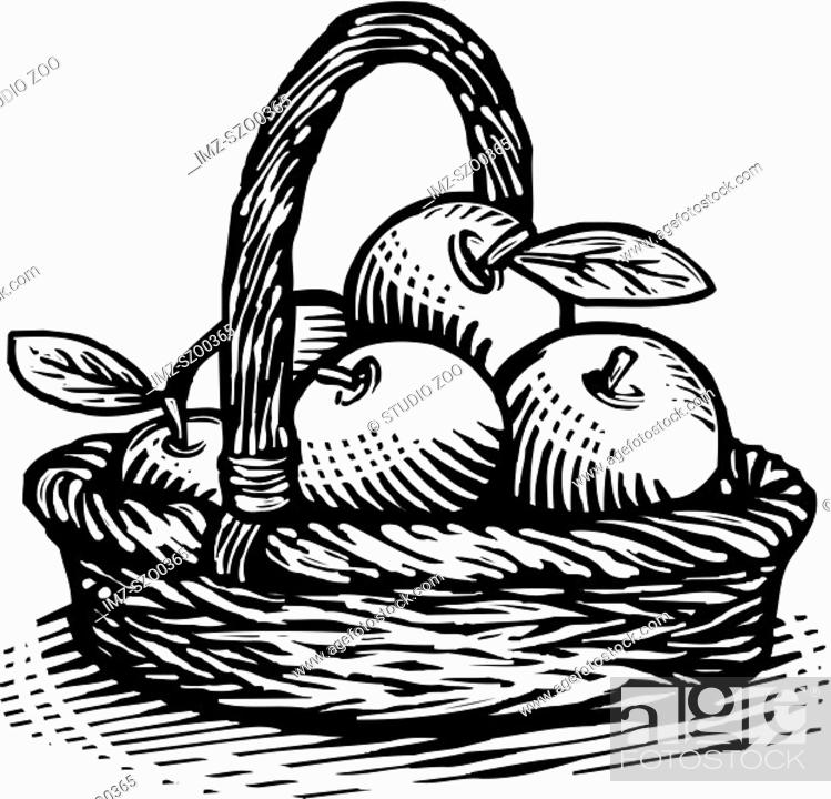 Stock Photo: Drawing of a basket of apples drawn in black and white.