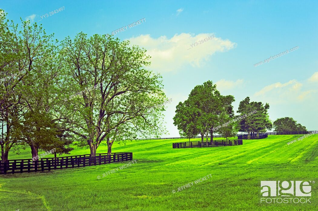 Stock Photo: Beautiful tree landscape. Scenic highway in Franklin County, Kentucky, USA.