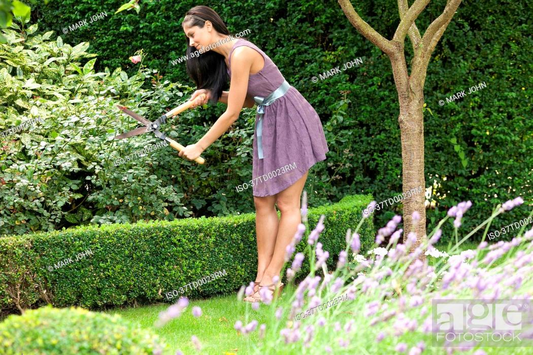 Stock Photo: Woman pruning plants in backyard.