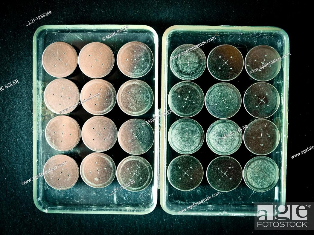 Imagen: Button batteries in a plastic box for recycling.