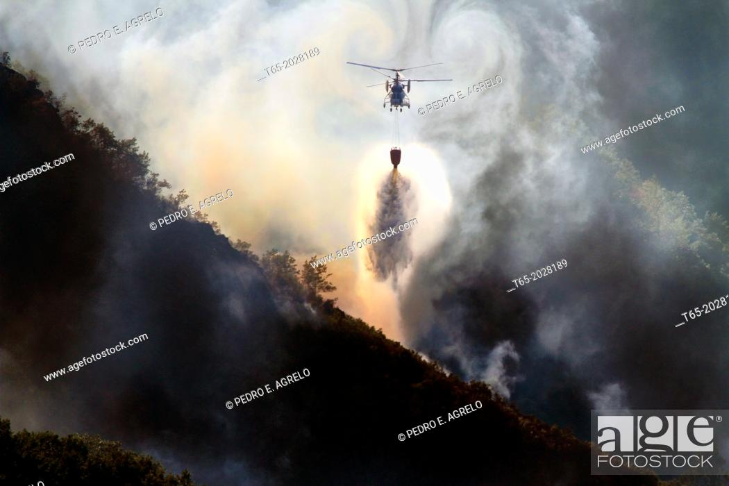 Imagen: August 2013 Lugo Fire in Navia, in Ancares, Natura protected area, Biosphere and reserba. It affects more than 500 hectares of forest.
