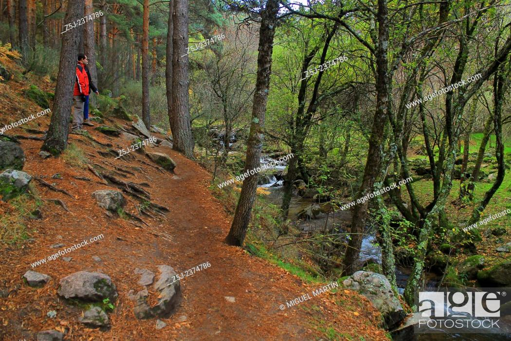 Stock Photo: The route alongside the Aguilón river to the El Purgatorio waterfalls, near Rascafría (Madrid autonomous region), passes close to many other small but beautiful.