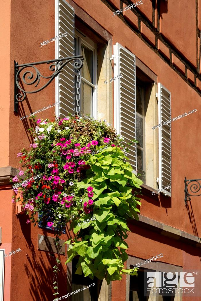 Stock Photo: France, Alsace, Strasbourg, house, old building, red facade, window, floral decoration, detail.
