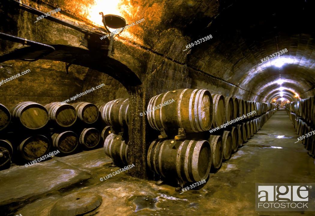 Stock Photo: Wine Cellars. . Villafranca del Penedés. . Barcelona. Spain.