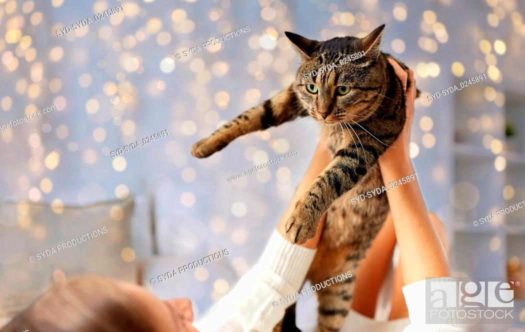 Stock Photo: young woman with cat lying in bed at home.