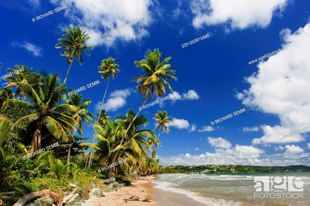 Stock Photo: Rockly Bay, Tobago.