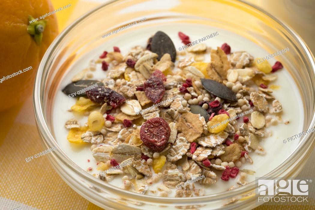 Photo de stock: Bowl with Yogurt and organic muesli close up.