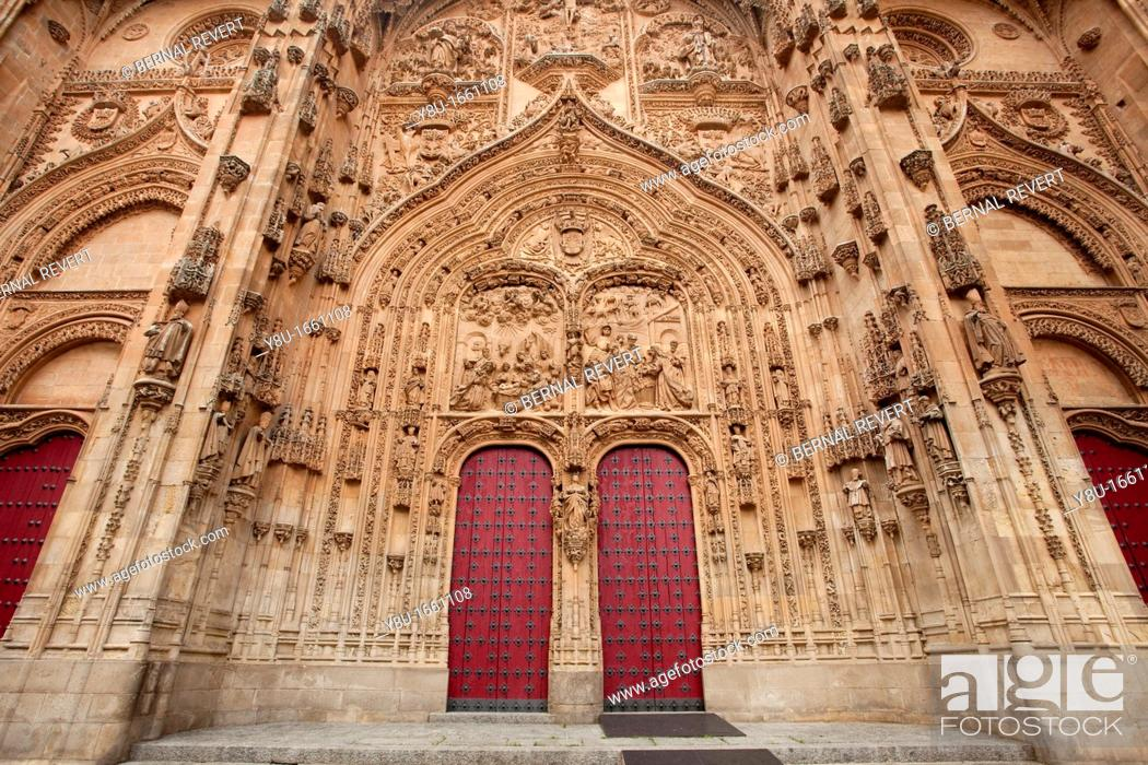 Stock Photo: Doors of the Cathedral of Salamanca, Spain.