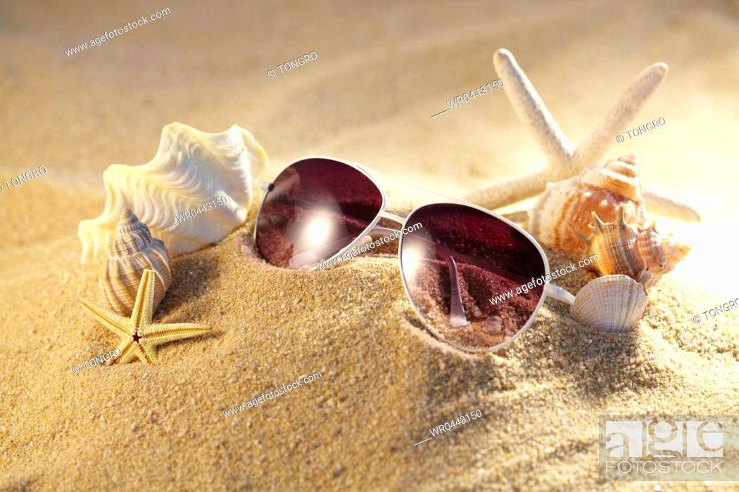 Stock Photo: sunglasses and starfish with sea shells on the sand.