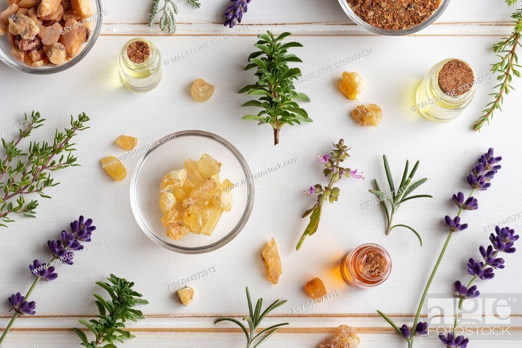 Stock Photo: Bottles of essential oil with frankincense, tulsi, mountain savory and other herbs on a white background.