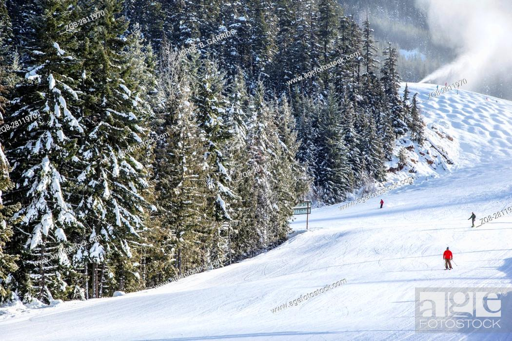 Stock Photo: Skiers Downhill, Whistler, BC, Canada.
