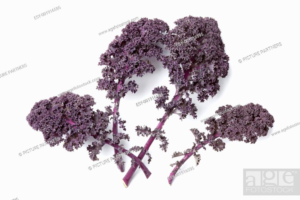 Photo de stock: Red curly kale leaves on white background.