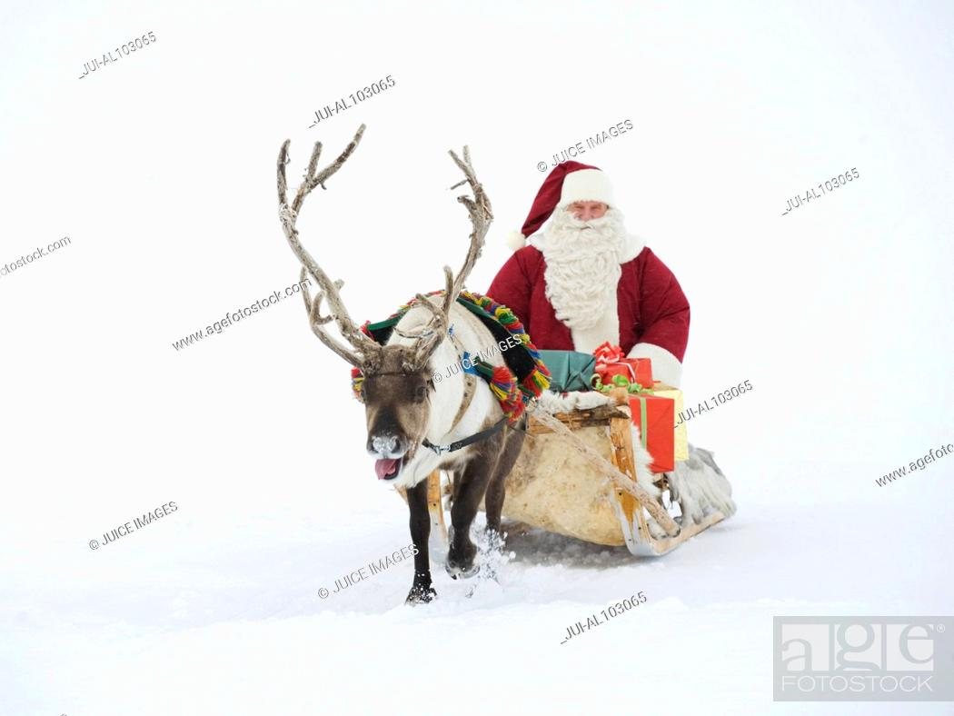 Stock Photo: A reindeer pulling Santa Claus and his sleigh of presents.