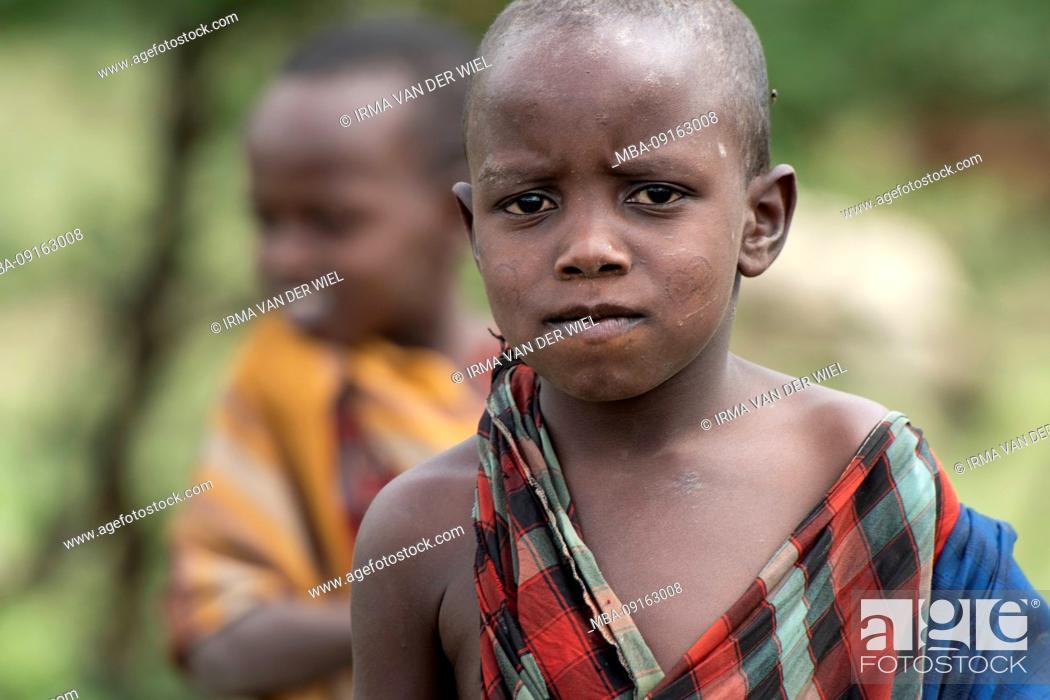 Stock Photo: Tanzania, Northern Tanzania at the end of the rainy season in May, Serengeti National Park, Ngorongoro Crater, Tarangire, Arusha and Lake Manyara.