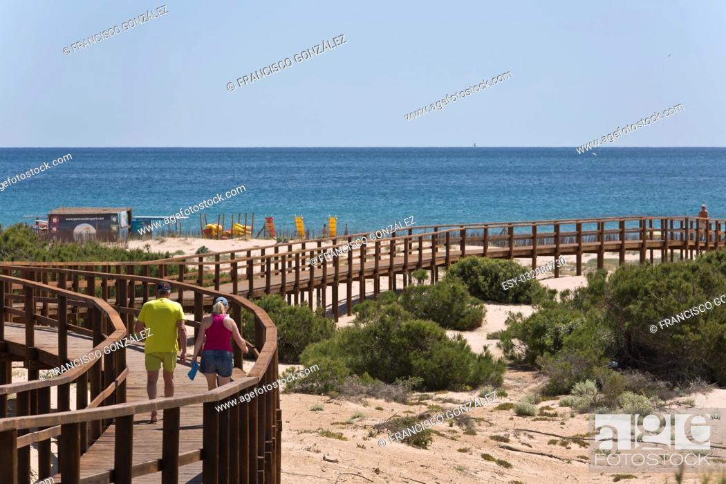 Photo de stock: wooden walkway arenales del sol in Elche, Spain.