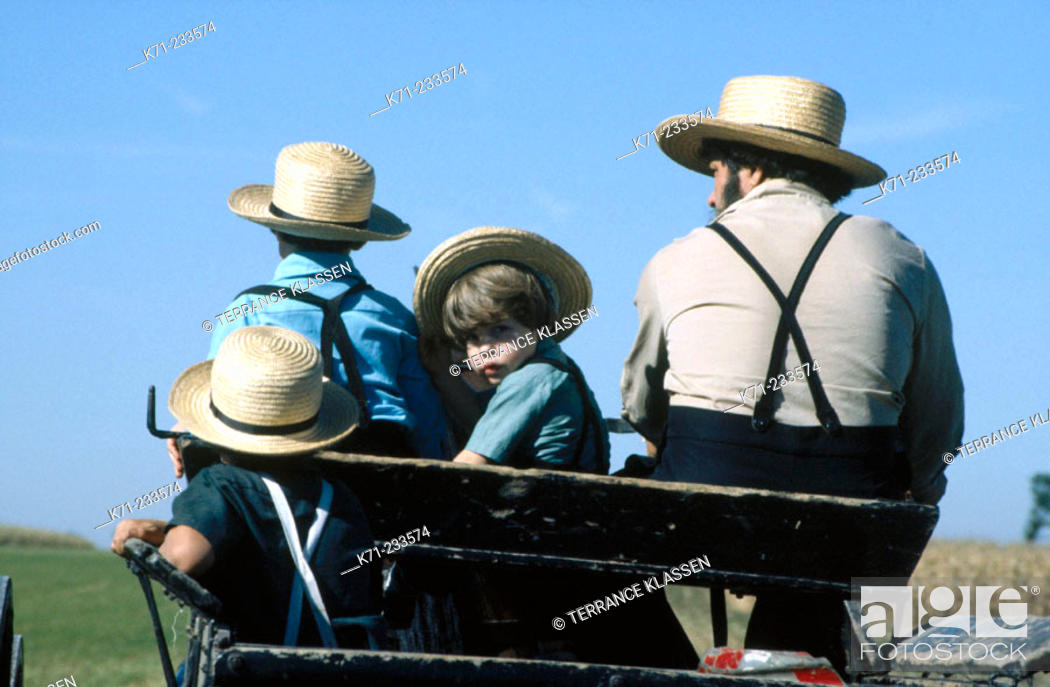 Stock Photo: Amish in a buggy. Lancaster County, Pennsylvania. USA.
