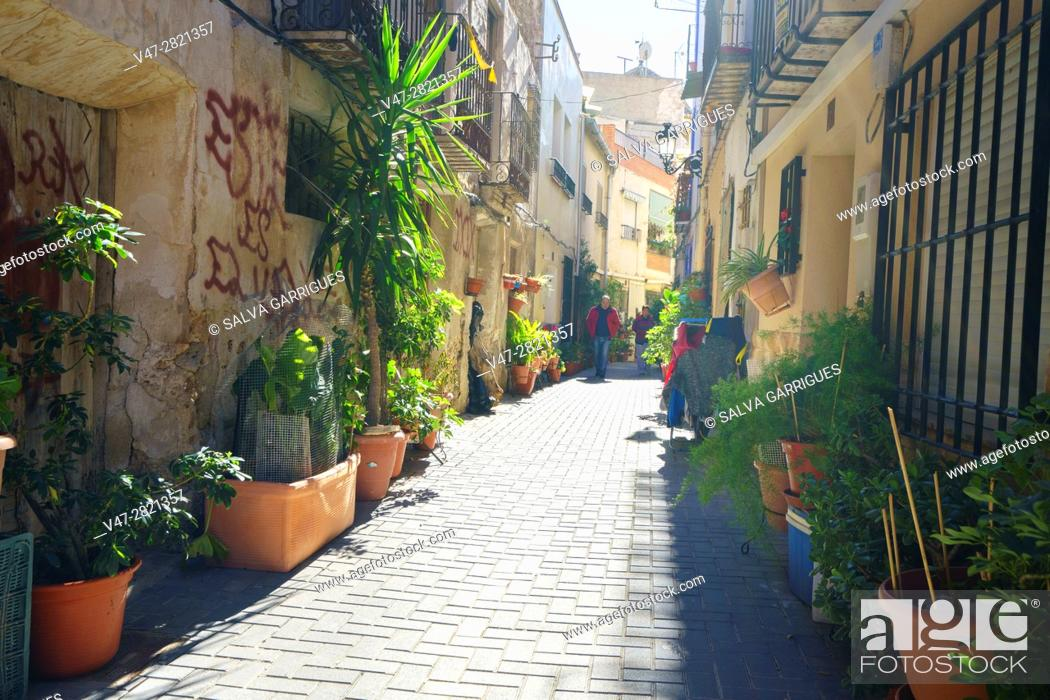 Imagen: Typical street decorated with plants in the town of Ojos, Murcia, Spain, Europe.