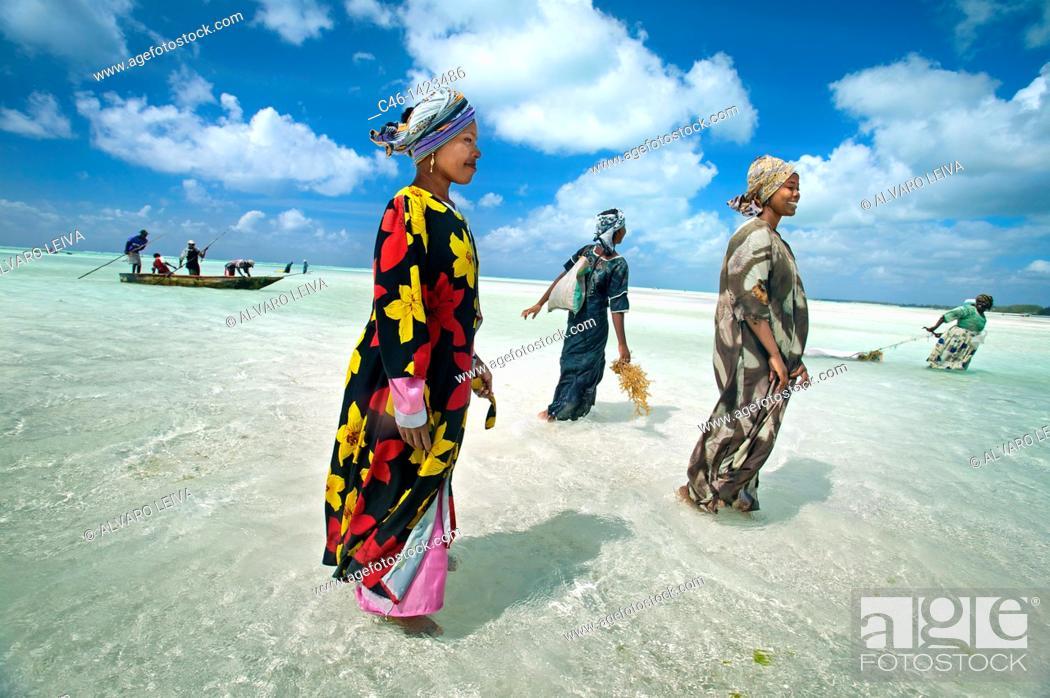 Stock Photo: Jambiani beach, Zanzibar Island, Tanzania.
