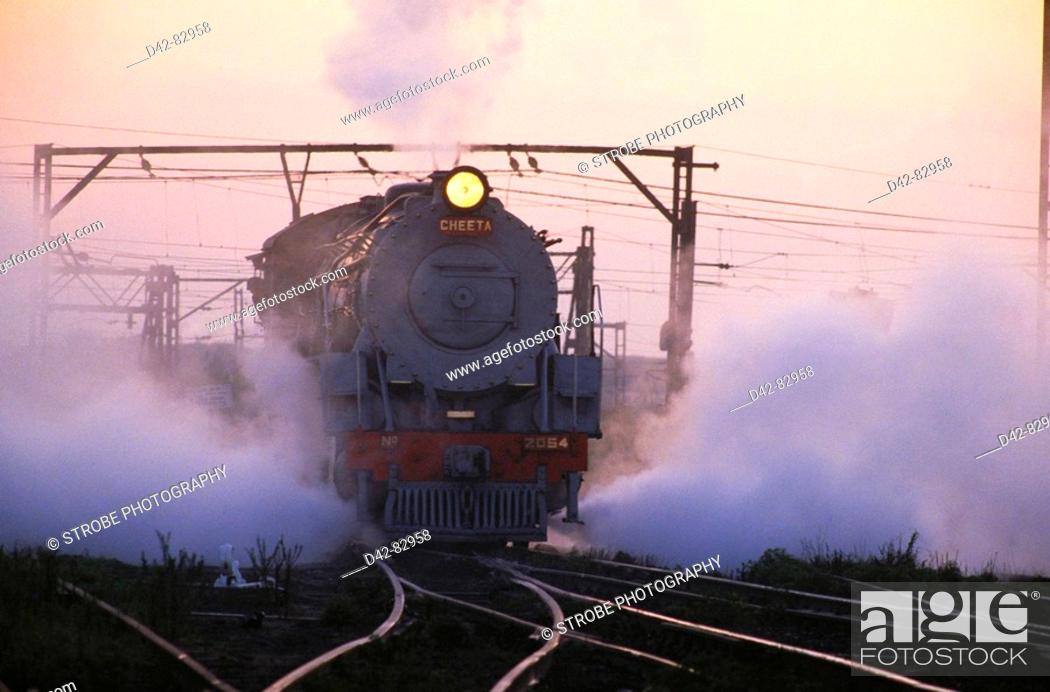 Stock Photo: Steam trains. South Africa.