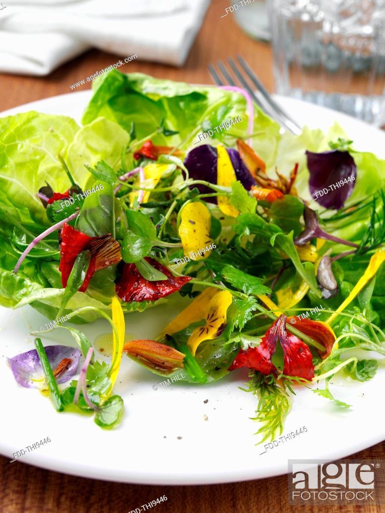 Stock Photo: Herb salad.