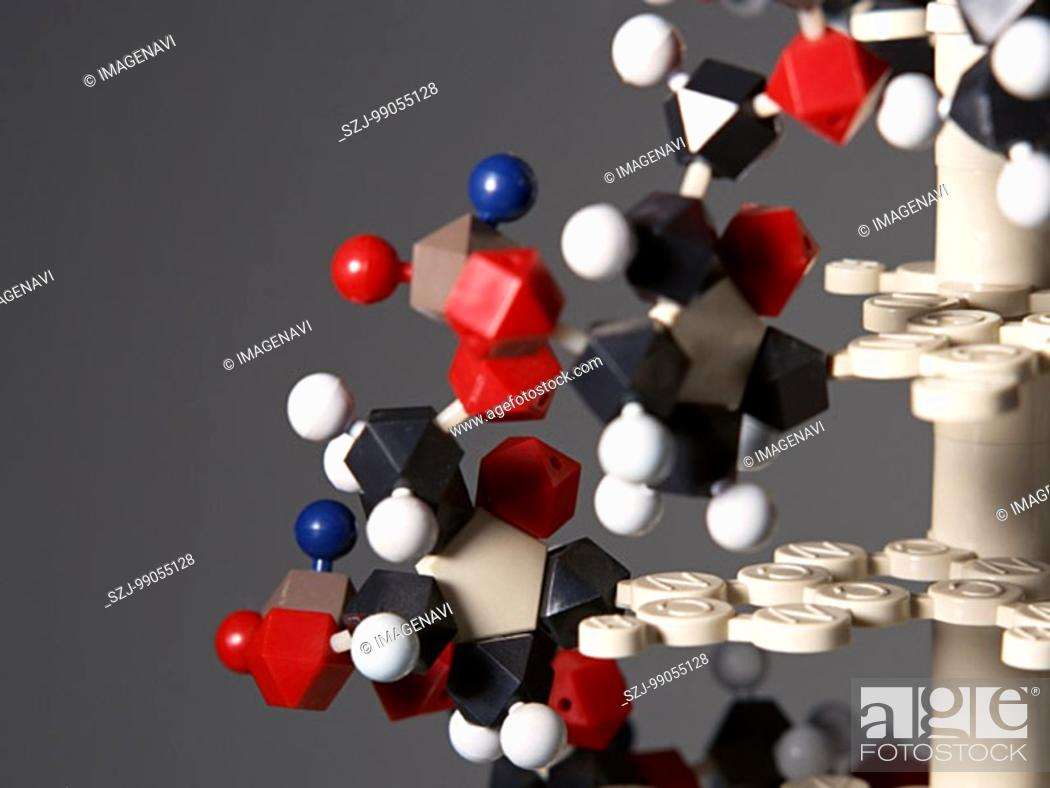 Imagen: DNA Model.