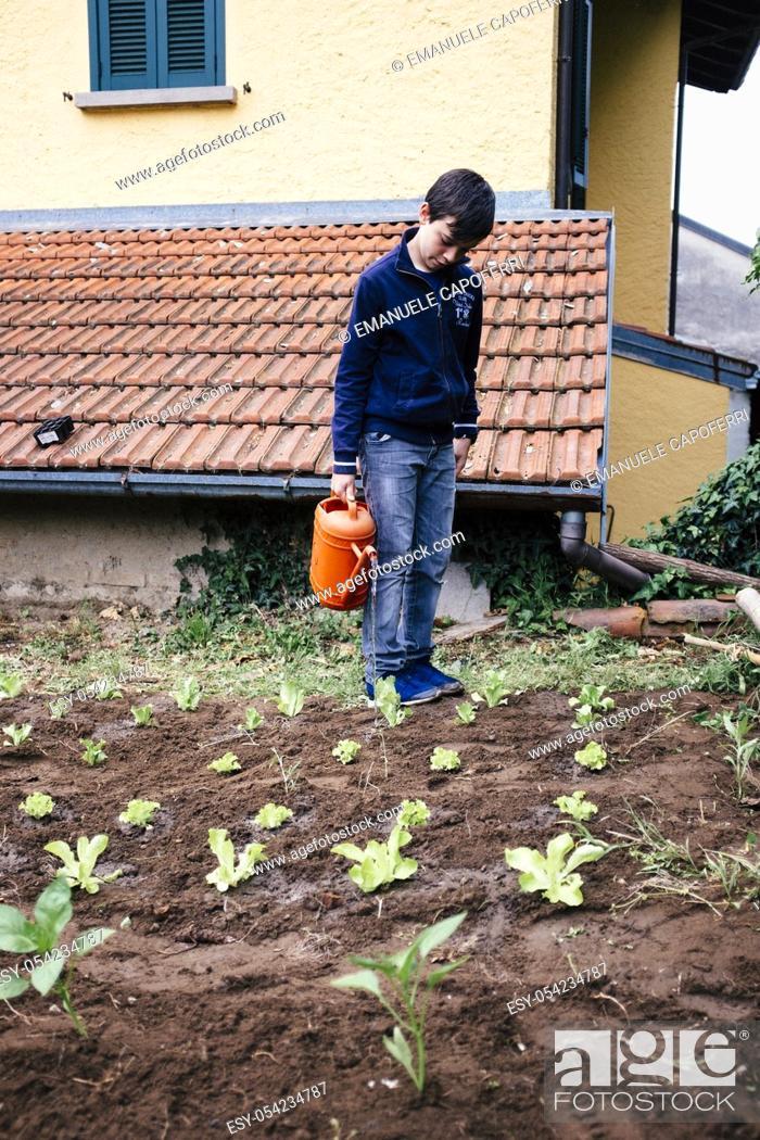 Stock Photo: child preparing vegetable garden.