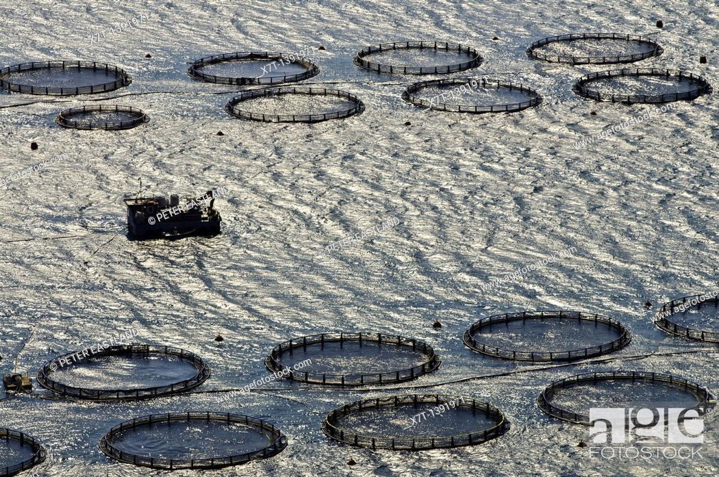 Stock Photo: Fish farming in the gulf of Argostoli, kefalonia, Greece.