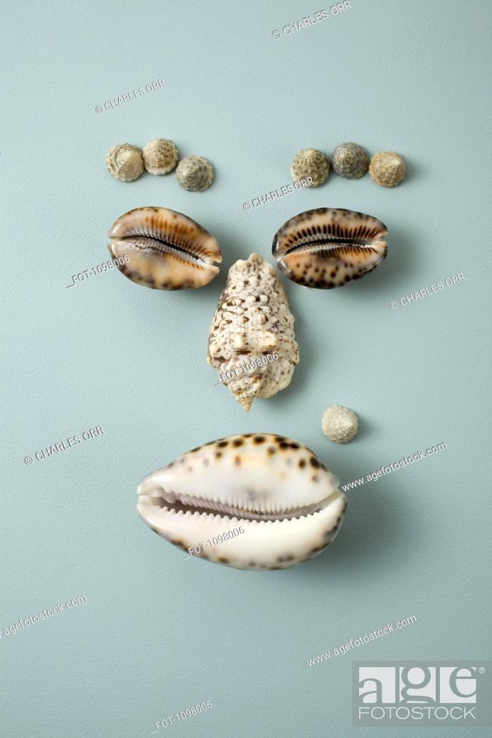 Stock Photo: Seashells arranged into a face.