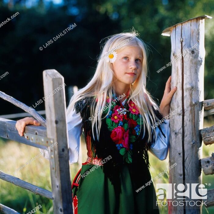 Stock Photo: Close-up of a girl standing at the gate.